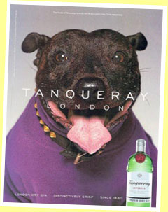 Tanqueray Gin ad from 2002